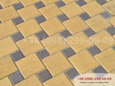 Тротуарная плитка Квадрат 100х100 коричневаяфото 16