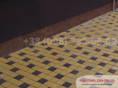 Тротуарная плитка Квадрат 100х100 коричневыйфото 17