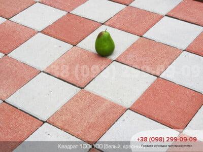Тротуарная плитка Квадрат 100х100 Краснаяфото 1