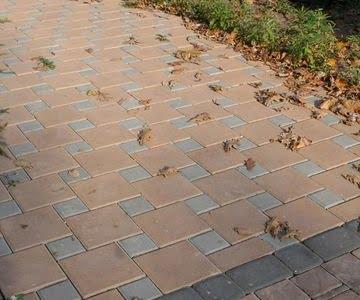 Тротуарная плитка Квадрат 100х100 сераяфото 2