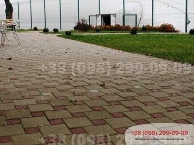 Тротуарная плитка Квадрат 200х200 Горчичныйфото 3