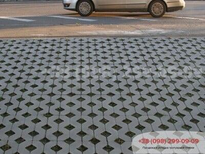 Тротуарная плитка Парковочная Решетка Сераяфото 1