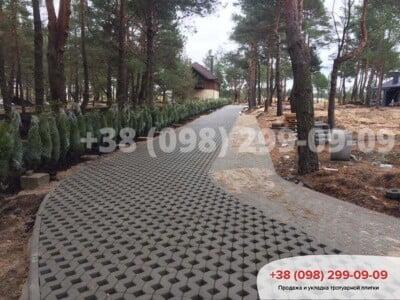 Тротуарная плитка Парковочная Решетка Сераяфото 6