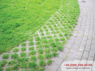 Тротуарная плитка Парковочная Решетка Сераяфото 9