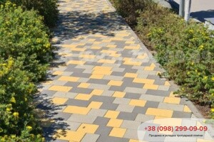 Серый Тротуарная плитка Плац Серая
