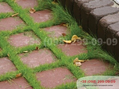Тротуарная плитка Решетка Эко Бордоваяфото 1