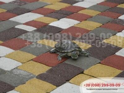 Тротуарная плитка Старый город Коричневаяфото 8