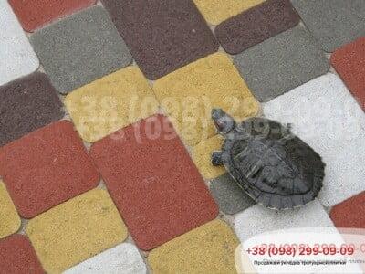 Тротуарная плитка Старый Город Желтаяфото 7
